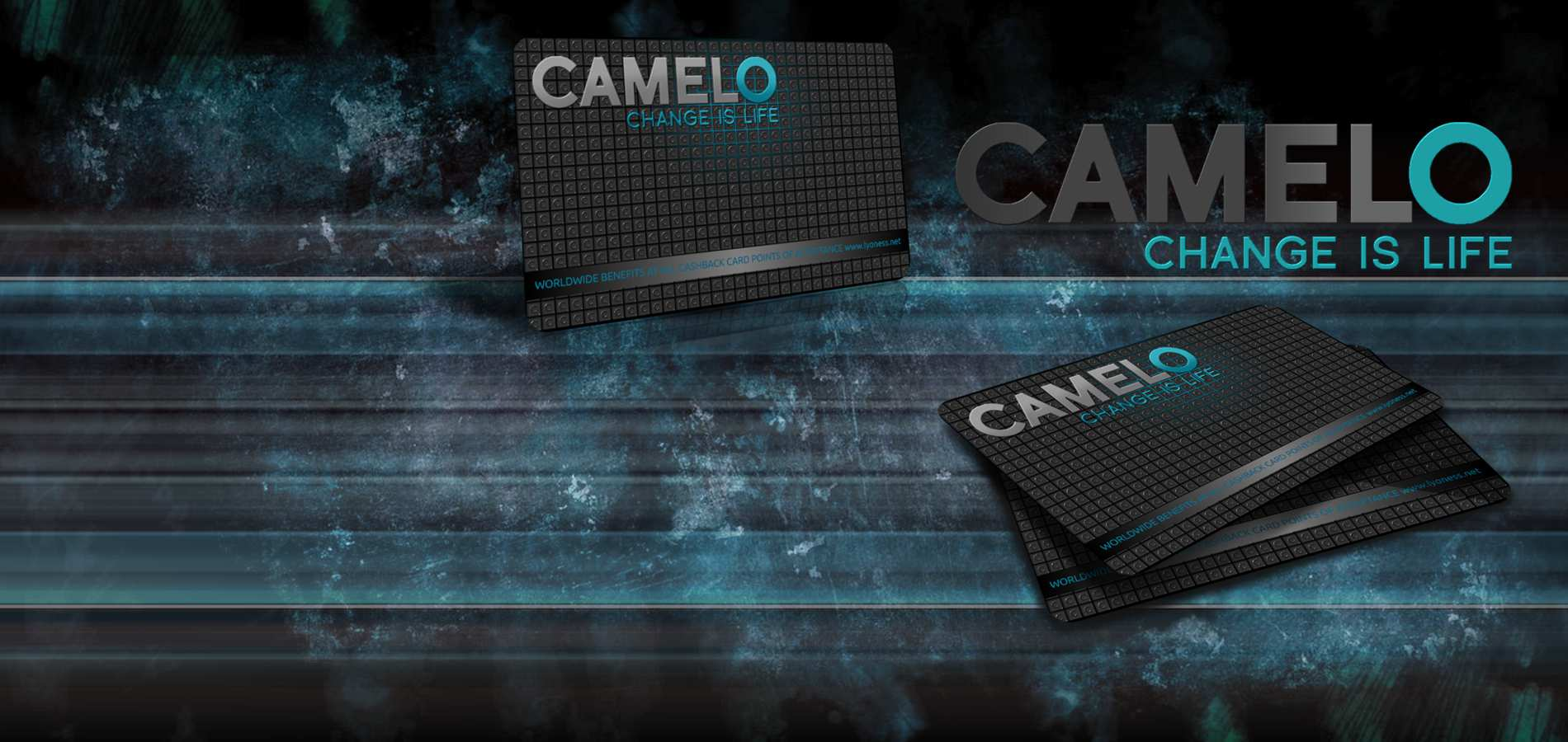 camelo-slider-1900×900-lyoness (2)